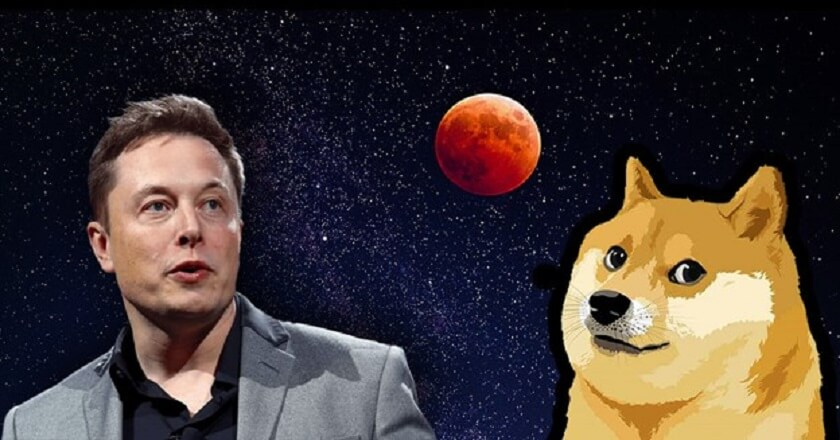 Celebrity Opinion Has Helped Dogecoin