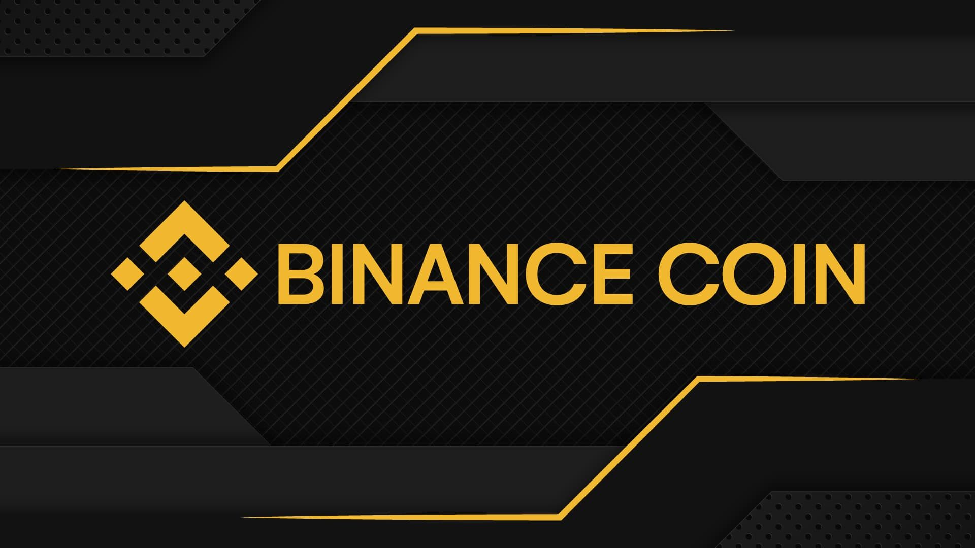 Experts Speculation on Binance Coin Price